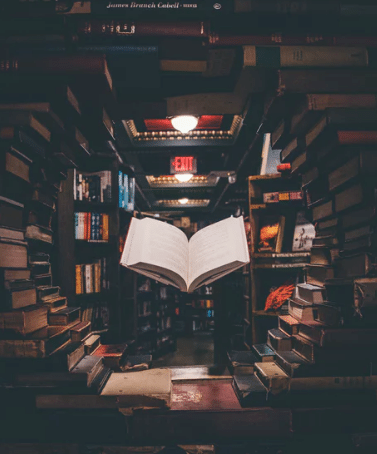 Gave til teenager » bøger