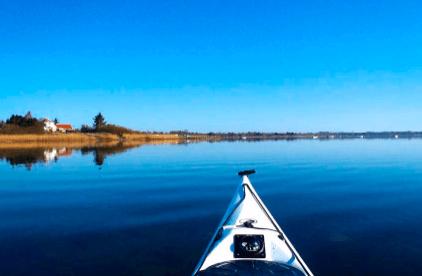Oplevelsesgaver » fjordsafari lammefjorden oplevelsesgave