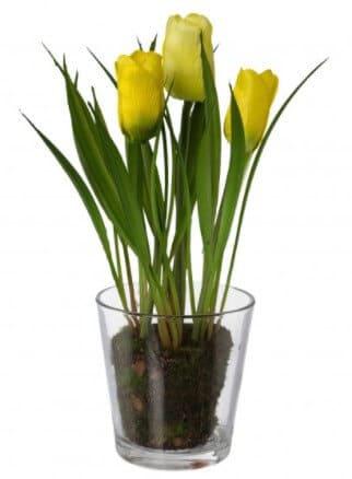 Send en gave til en du har kær » Blomster